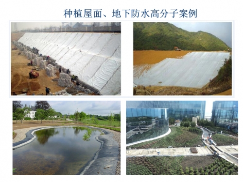 广州种植屋面